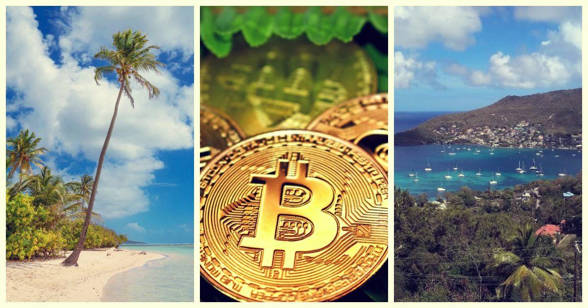 trade fidelitate bitcoină bitcoin miner salariu